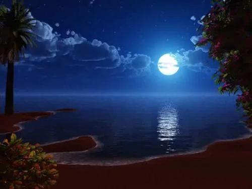 Місячний календар краси:
