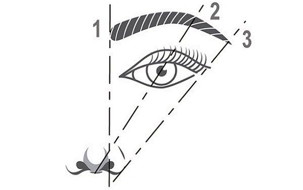 Перед корекцією брів слід визначити їх потрібну форму