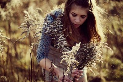 Трави від випадіння волосся